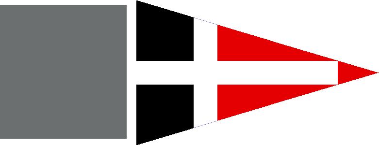 Vsaw logo new